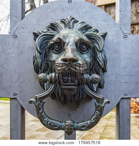 A classic lion head door knocker made out of metal and attached to a metal gate.