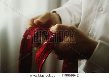 Handsome groom holding red tie elegant man preparing for wedding in the morning with a stylish tie in his hands closeup