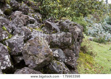 Buffalo wall stone retaining divider to seperate wildlife from villages in Volcanoes Natioanl Park Rwanda.