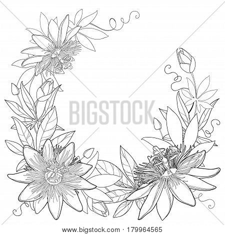 Vector wreath with outline tropical Passiflora or Passion flowers, bud, leaves and tendril isolated on white background. Ornate floral elements in contour style for summer design and coloring book.