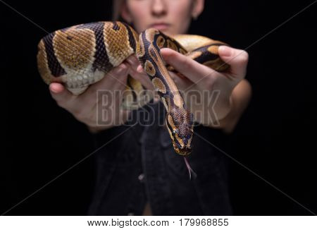 Young woman showing snake on black background