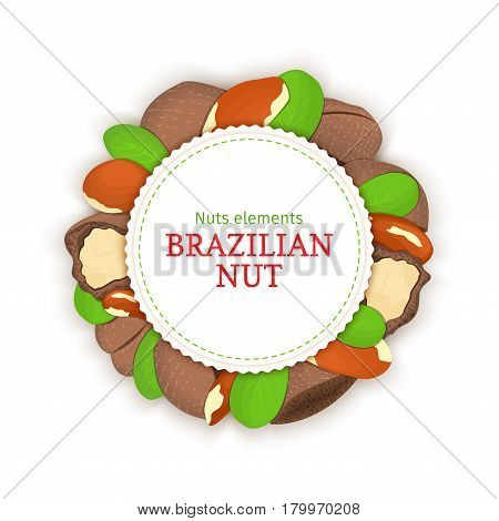 Round banner composed of brazil nut. Vector card illustration. Circle nuts frame, brazilian nut fruit in the shell, whole, shelled leaves appetizing looking for packaging design of healthy food