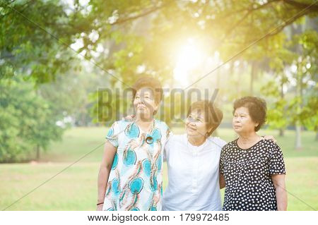 Group of Asian senior adult women having fun at green park, elderly outdoors activity, friendship concept, morning sun flare background.