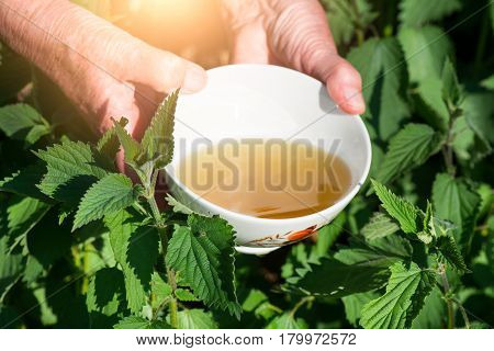 Infusion Of Nettles