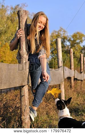 cheerful teenage girl playing with outbred dog in the autumn day