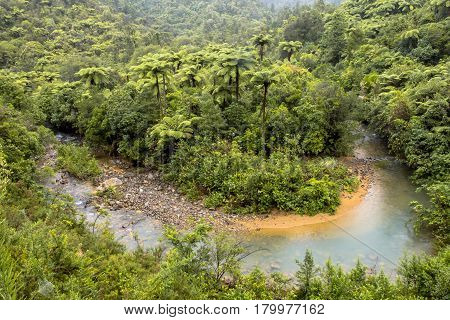 Meandering Creek Through Forested Hills Of New Zealand