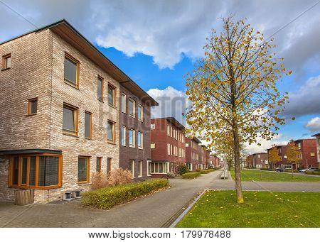 Suburban Terrace Houses