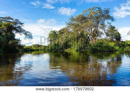 Flooded Amazon rain forest in Palmari, Brazil