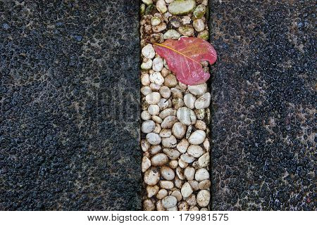 Pavement of round brilliant stones of different colors background