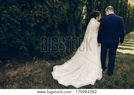Romantic Couple Of Newlywed Holding Hands Outdoors, Handsome Groom Holding Hands With Beautiful Brid