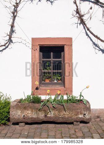Window In Relief