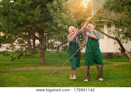 Elderly people having fun. Cheerful couple with garden hose.