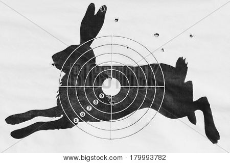 Black and white photo The shot target for shooting from a pneumatic in the form of a hare