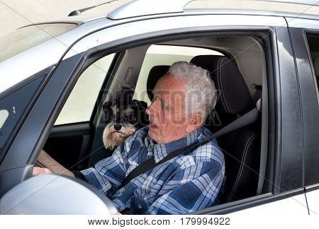 Senior man driving car with dog beside him