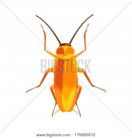 Cockroach insect colorful cartoon character isolated on a white background