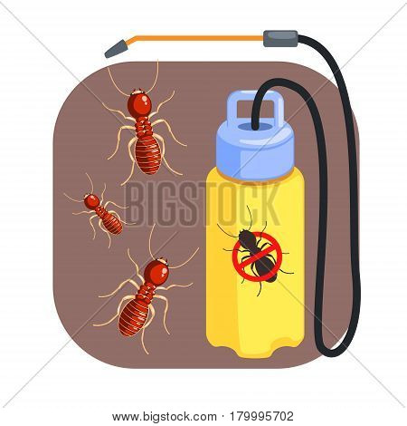 Pressure sprayer for extermination of termites and ants. Pest control service, detecting exterminating insects. Colorful cartoon illustration