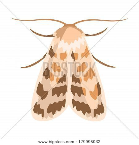 Ash sphinx moth or manduca jasminearum. Colorful cartoon illustration isolated on a white background