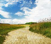 yellow brick road through green meadows, fantasy background poster