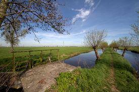 Landscape near by Oud Alblas