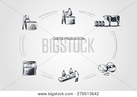 Cheese Production - Taking Milk From Cow, Boiling Milk, Mixing Ingredients, Cutting Cheese Vector Co