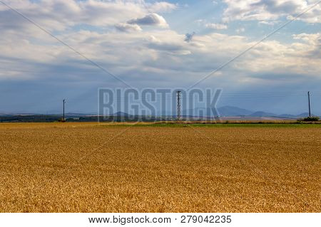 Crepuscular Rays Over Cornfield And Electrical Poles, June South Bulgarian Agricultural View