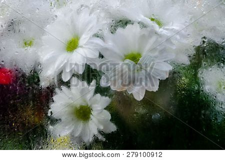 A Bouquet Of White Chrysanthemums Behind The Steamy Show-window At Night Time