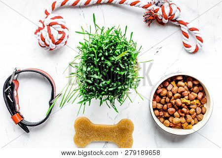 Dry Dog Food In Bowl On Stone Background Top View