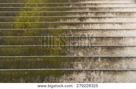 Dirty Stairs Overgrown With Moss For Backgrounds