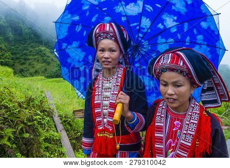 Ha Giang , Vietnam - Sep 14 : Women From The Red Dao Minority In A Village Near Ha Giang In Vietnam