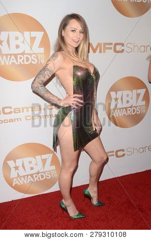 LOS ANGELES - JAN 17:  Natasha Starr at the 2019 XBIZ Awards at the Westin Bonaventure Hotel on January 17, 2019 in Los Angeles, CA