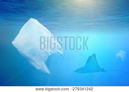 One Stingray Swimming Near Plastic Bag In The Open Sea