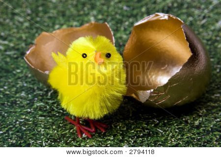 Chick Hatching From Gold Shell