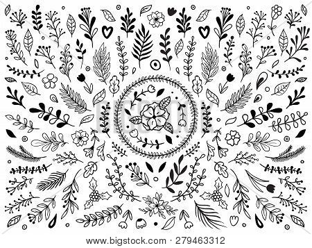 Hand Drawn Flowers Ornament. Ornamental Sketch Flourish Flower. Vintage Floral Ornaments Isolated Ve