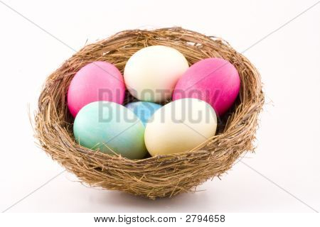Colorful Eggs In Nest