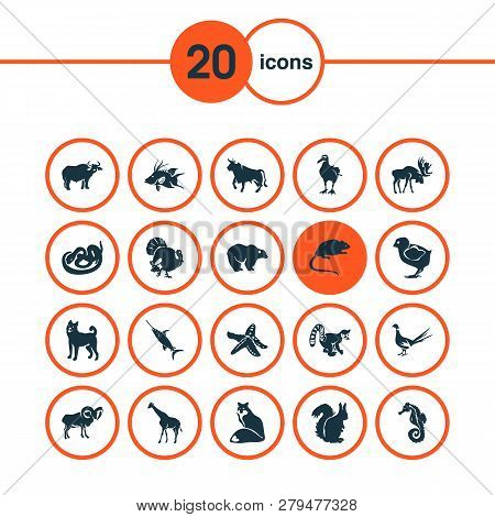 Zoo Icons Set With Moose, Starfish, Giraffe And Other Hippocampus Elements. Isolated Vector Illustra