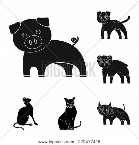 Isolated Object Of Animal And Habitat Logo. Set Of Animal And Farm Vector Icon For Stock.