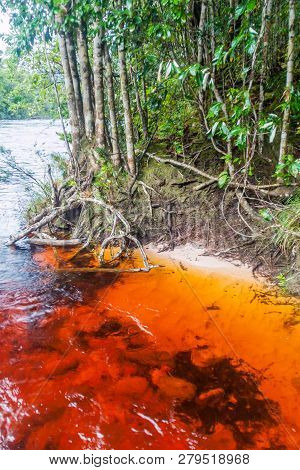 Red Colored Water Of Churun River In National Park Canaima, Venezuela.