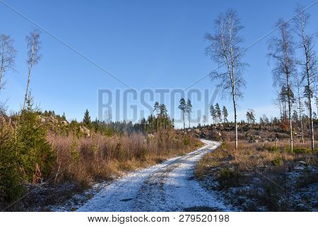Winding Snowy Dirt Road Through The Woods