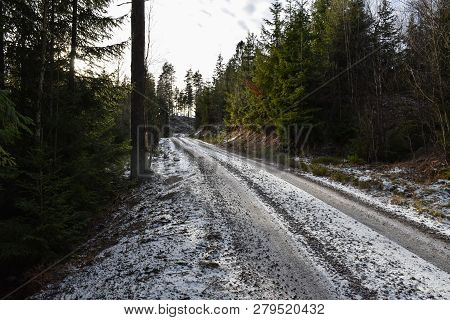 Winding Frosty Gravel Road Through A Coniferous Woodland