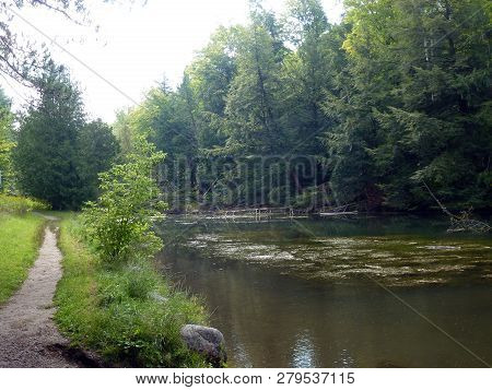 The Trail And River In The Summer Forest