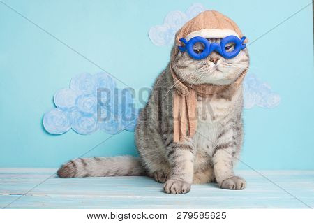 Very Funny Cat Pilot Of An Airplane With Glasses And A Pilot's Hat, Against A Background Of Clouds.