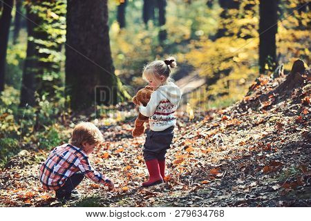 Active Children Play Games On Fresh Air In Autumn Forest. Active Rest And Kids Activity Outdoor.
