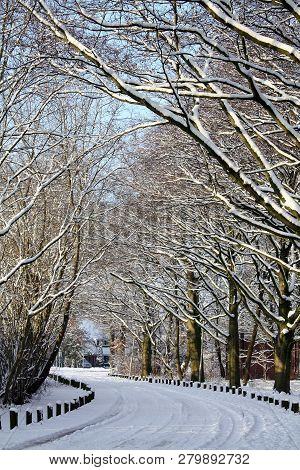 Snow In The City Park Of Groningen. The Netherlands