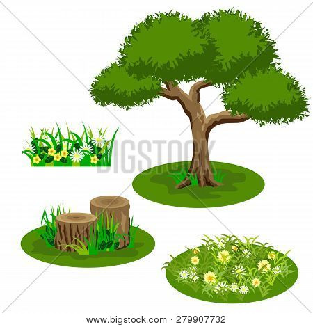 Set Of Landscape Elements For Summer Forest Or Garden Scene Design. Tree, Flowers In Grass, Chamomil