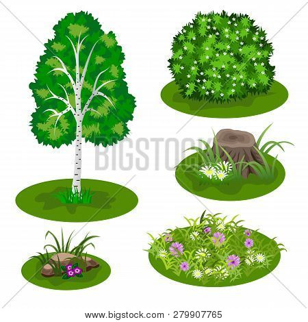 Garden Or Forest Elements. Set To Create Landscape Scene For Cartoon Or Video Game Asset. Birch Tree