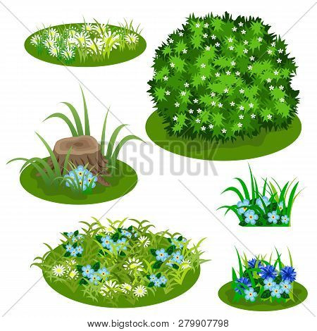 Garden Landscape Set. Tile Set For Summer Forest Or Garden Design. Bush, Flowers In Grass, Cornflowe