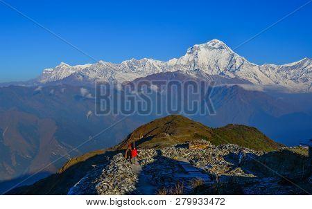 Shikha, Nepal - Oct 24, 2017. Beautiful Snow Peaks Of Annapurna Range, Nepal. Annapurna Includes One