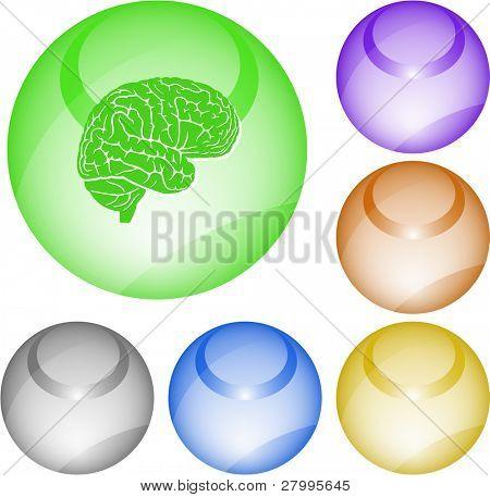 Brain. Vector interface element.