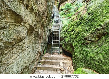 Ladder Stairs Climbing In Sandstone Gulch. Climbers Path Via Ferrata, Steel Ladder And  Rope On A Ro