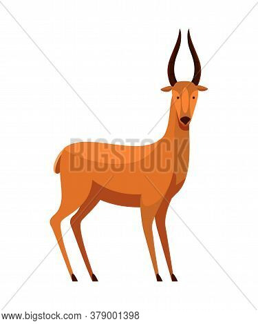 Cartoon Roe Deer With Horns And Scared Muzzle. Adult Wild Forest Prairie Animal Character Isolated O